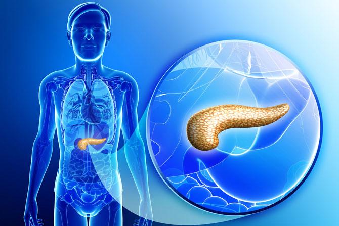 pankreas-kanseri-hbr.jpg